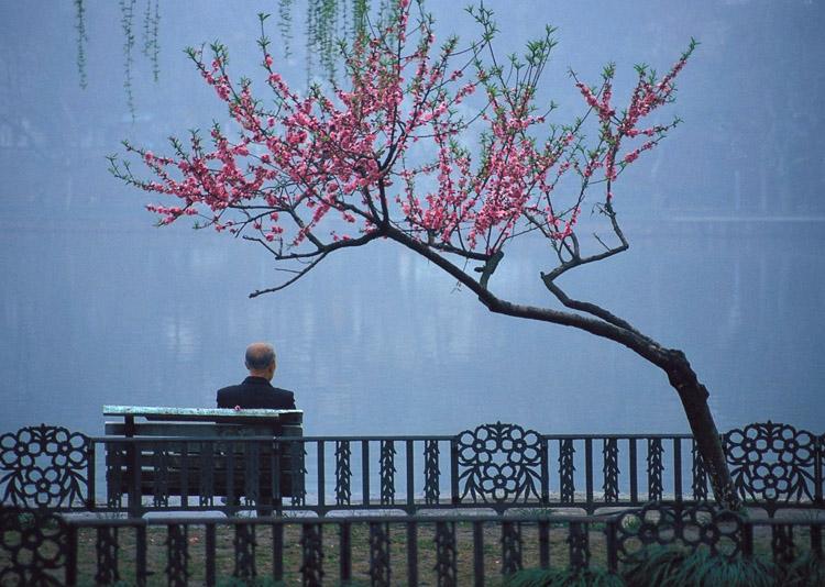 Hangzhoubench copy