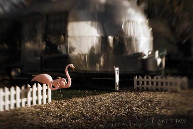 Bisbee shady dell airstream flamingos