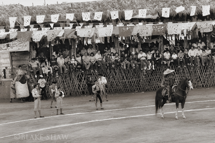 Tizimin bullfight entry copy