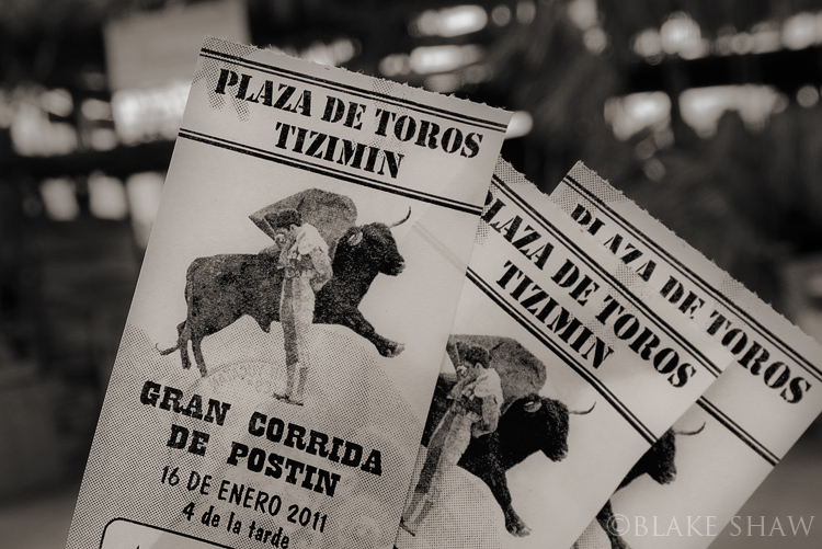 Tizimin bullfight tickets copy
