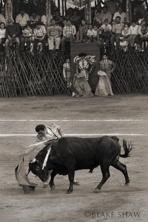 Arturo velasquez tizimin bullfight copy