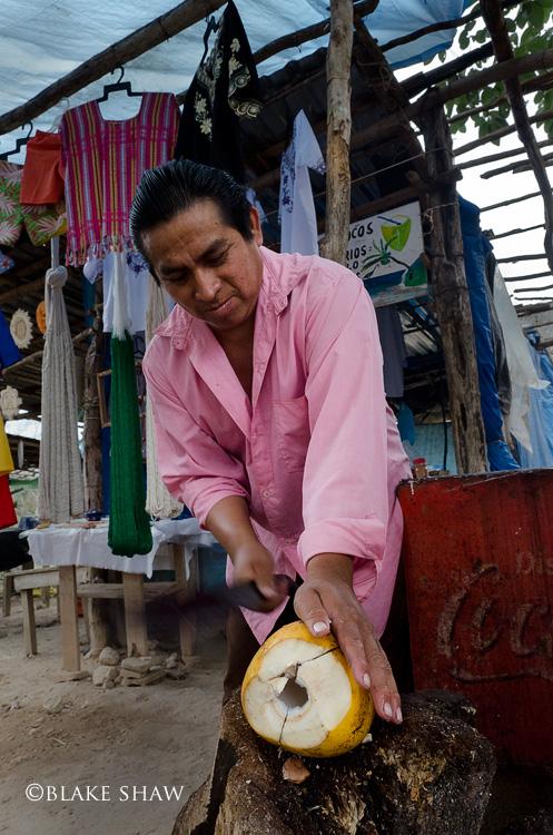 Coconut vendor copy