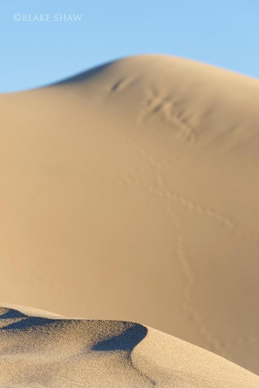 Death valley dunes 3