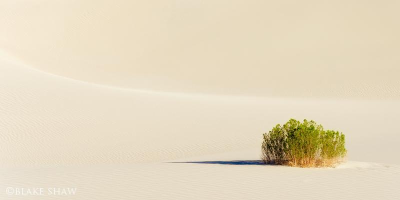 Death valley dunes 6 copy