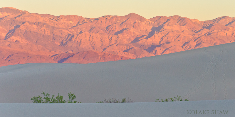 Death valley dunes and mountains