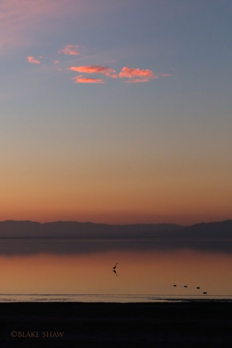 Salton sea sunset 3