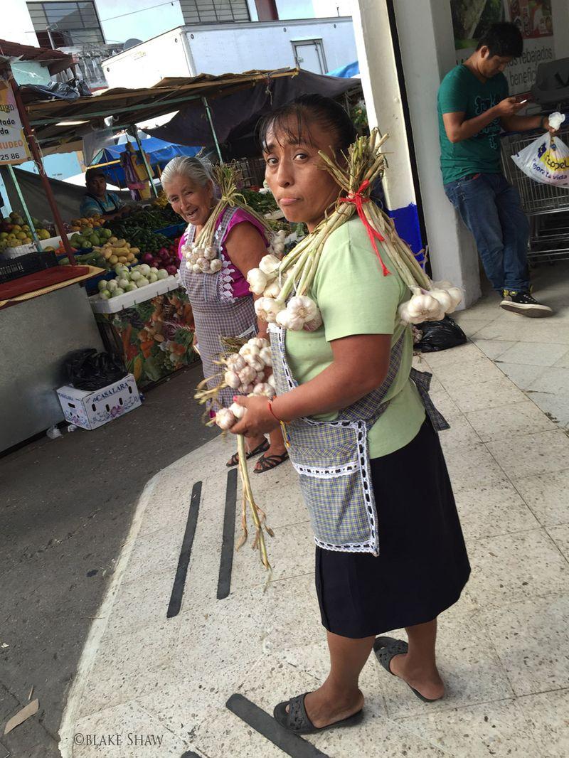 Tuxtepec garlic