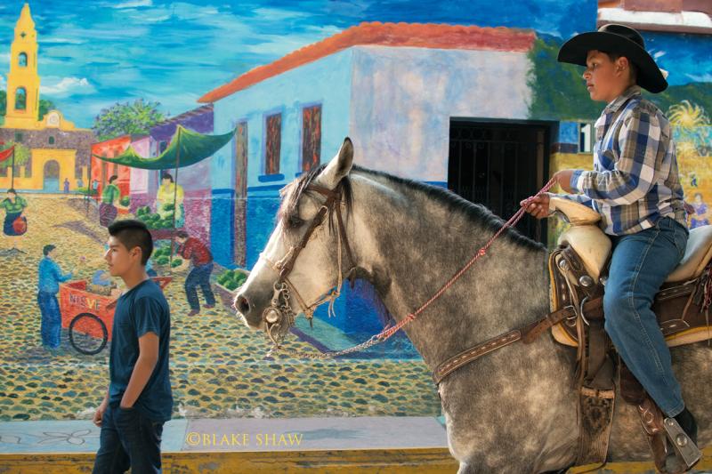Ajijic horse