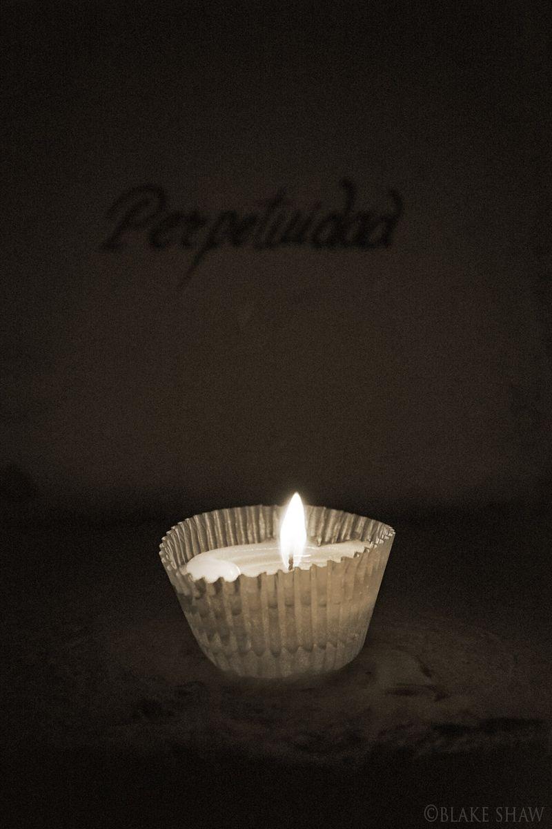 Perpetuidad