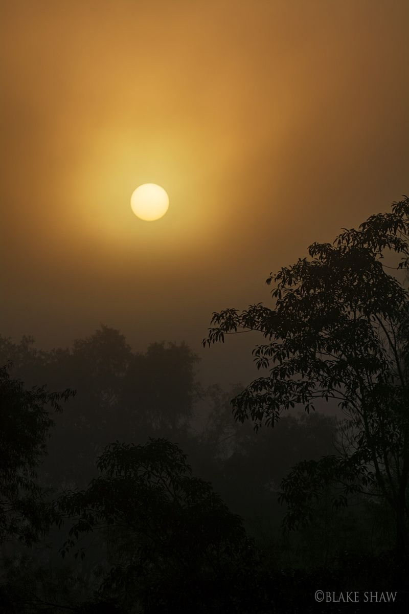 Tuxtepec sunrise