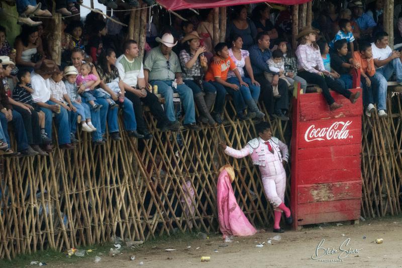 Tizimin bullfight