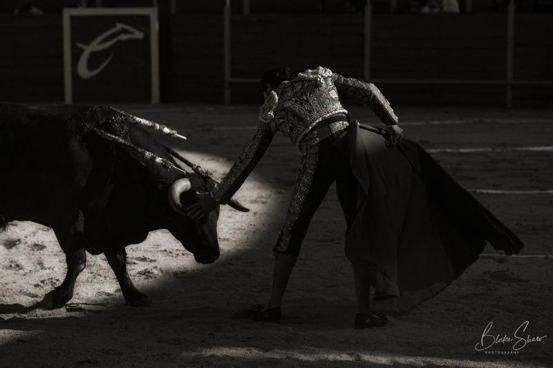 Alfredo rios el conde tijuana