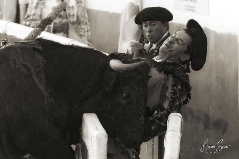 Mexicali bullfight