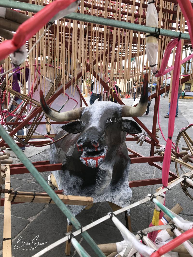 Xico fireworks bull