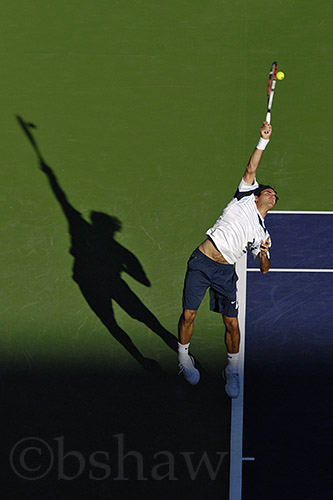 Federer_serve_copy